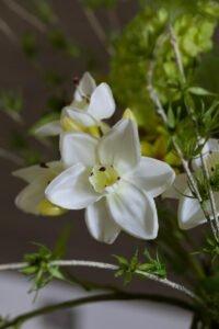 wiosenne kwiaty sztuczne